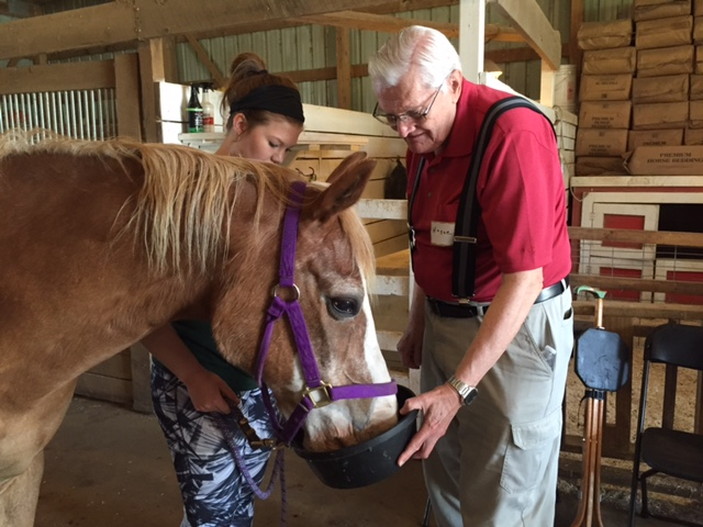 Photo of a horse being fed by senior citizens in the barn at Nature's Edge