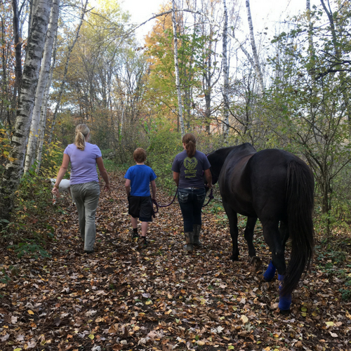 Natures Edge - Trail Walking with Horses (1)